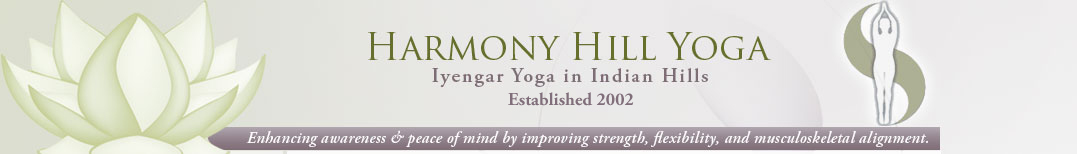 Harmony Hills Yoga Enhancing Awareness and Peace of Mind by improving Strength, Flexibility and Musculoskeletal Alignment